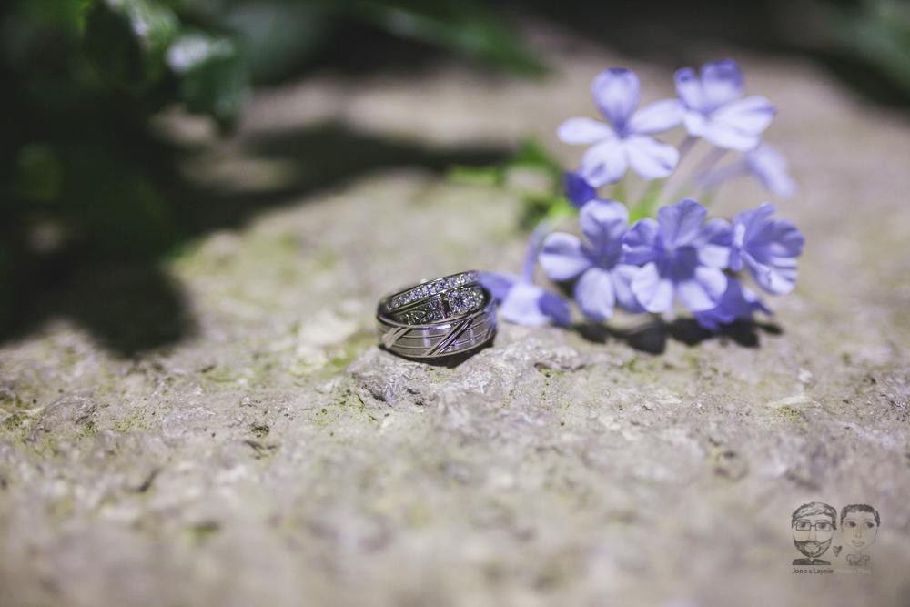 Butterfly Conservatory-JonoLaynie53.jpg
