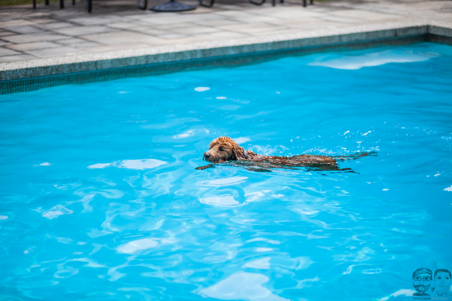 BurlingtonPhotographer011-jonolaynie.jpg