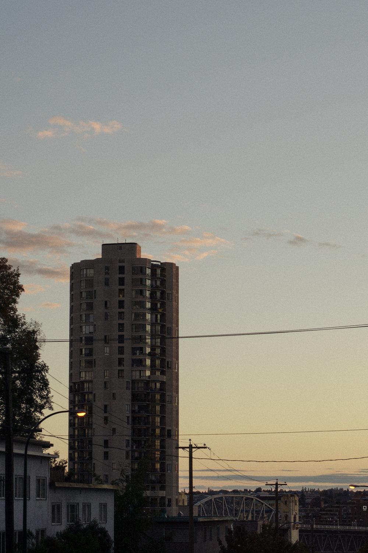 DSC04133.jpg