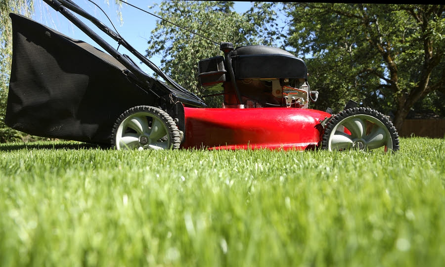 We provide you with the information to get the best results for your lawn & landscape    Read more >>