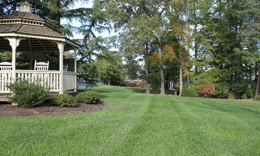 The Select lawn care program is designed specifically for the soils and conditions of the Piedmont    Read more>>