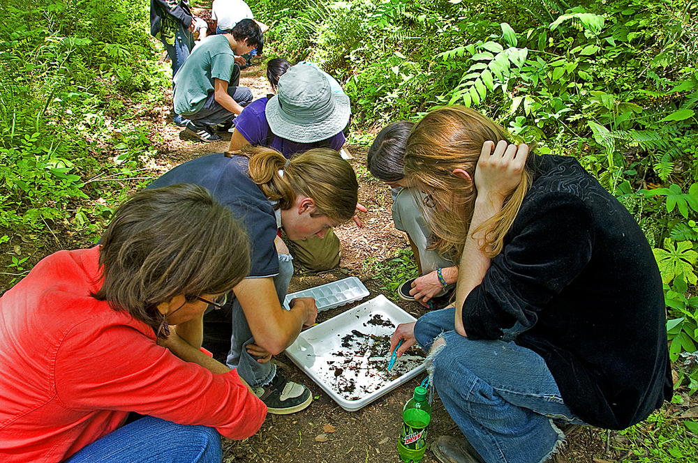 Bio Blitz at the WNC Nature Center in Asheville, NC ©FitzPatrick_018 copy.jpg