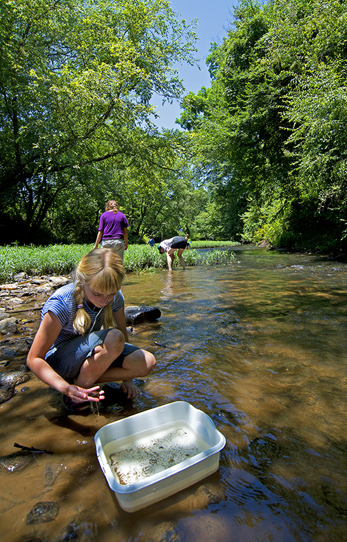Studying the Swannanoa River in Asheville, NC .jpg