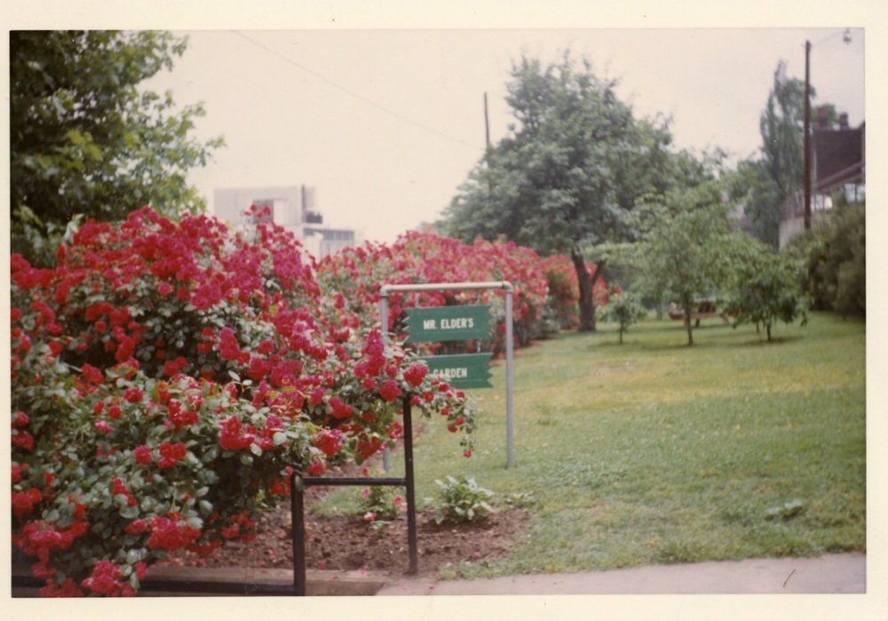 Mr. Elder's Garden on Monument Terrace