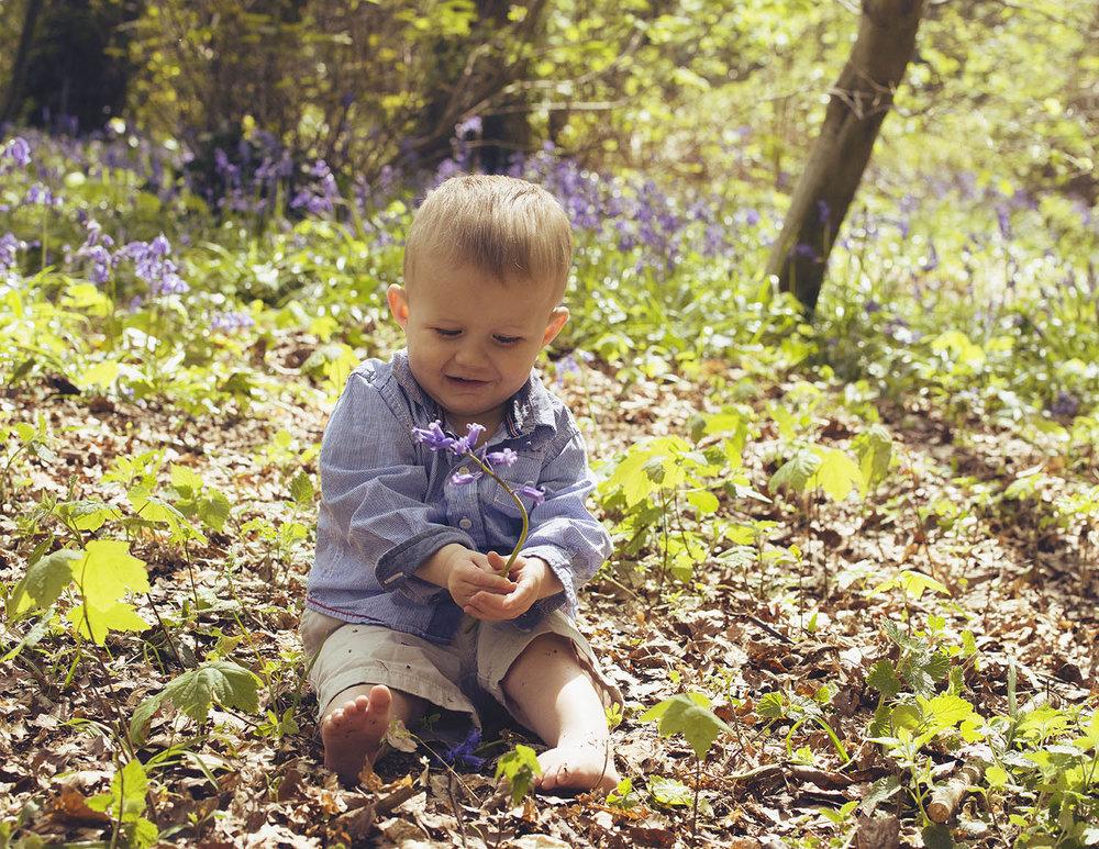 boy-flower-bluebell-arundel.jpg