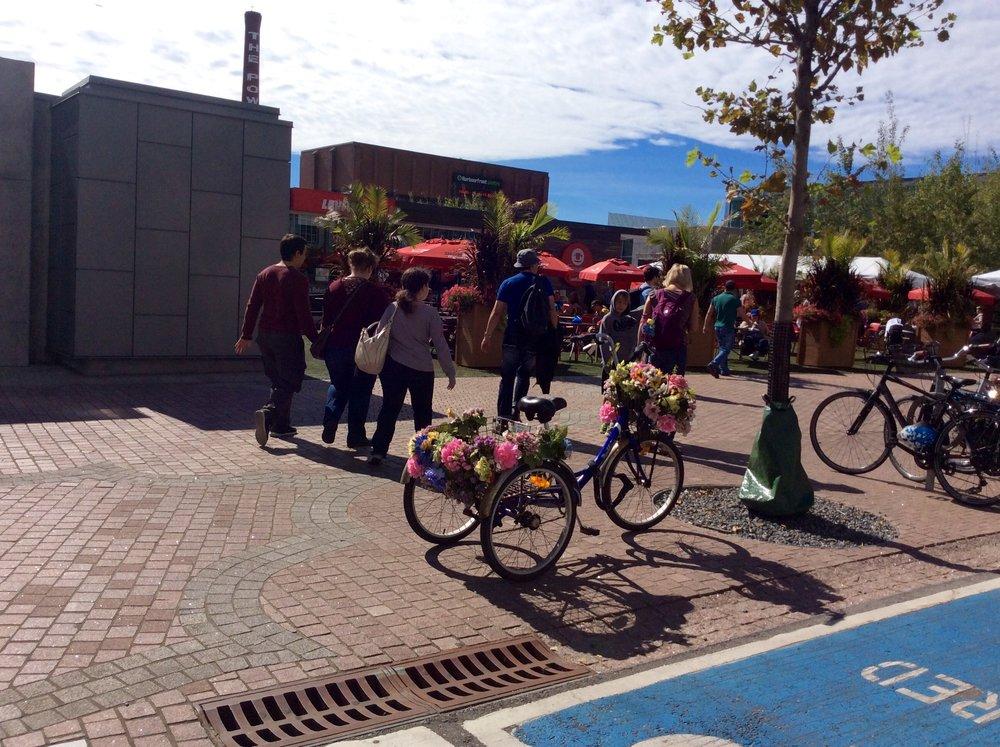bike of many flowers.jpg