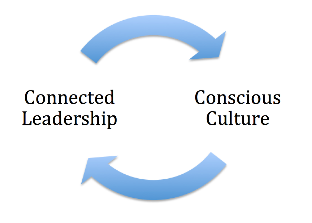 It takes a Connected Leader to create a conscious business culture.  And a well developed business culture will create new connected leaders.  This is a virtuous cycle regenerating connection at work.
