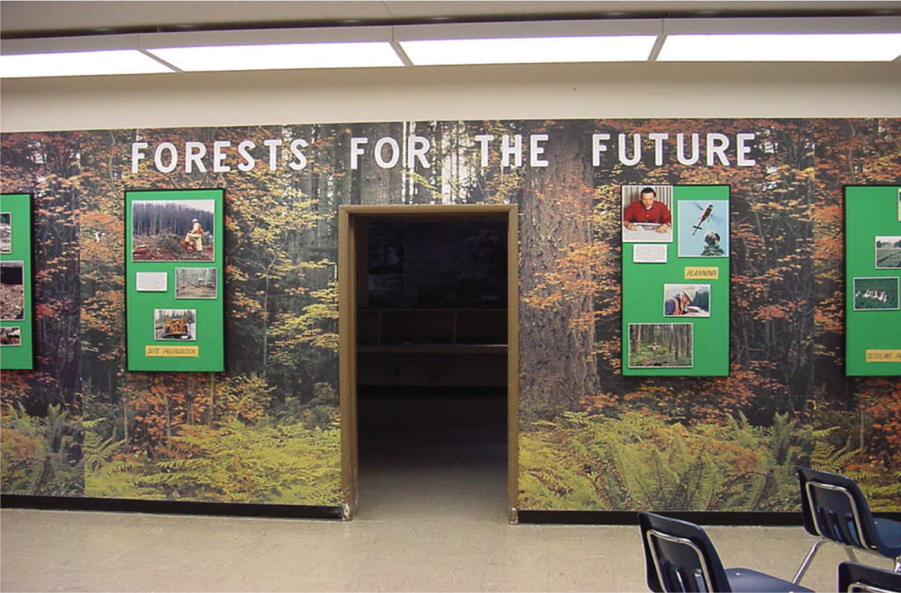 Forestry Room