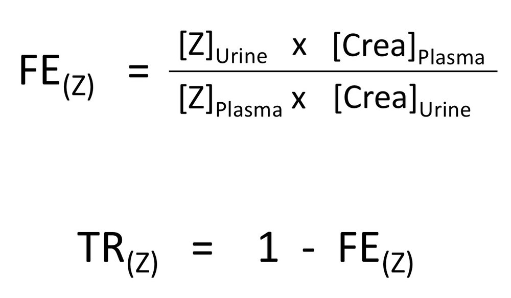 Fig. 1. Formulas for calculating the fractional excretion (FE) and the fractional tubular reabsorption (TR) of a substance Z.