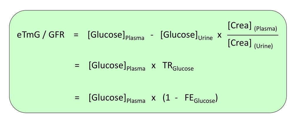 Fig. 5. Estimating the tubular threshold for glucose (eTmG/GFR). FE fractional excretion, TR tubular reabsorption.