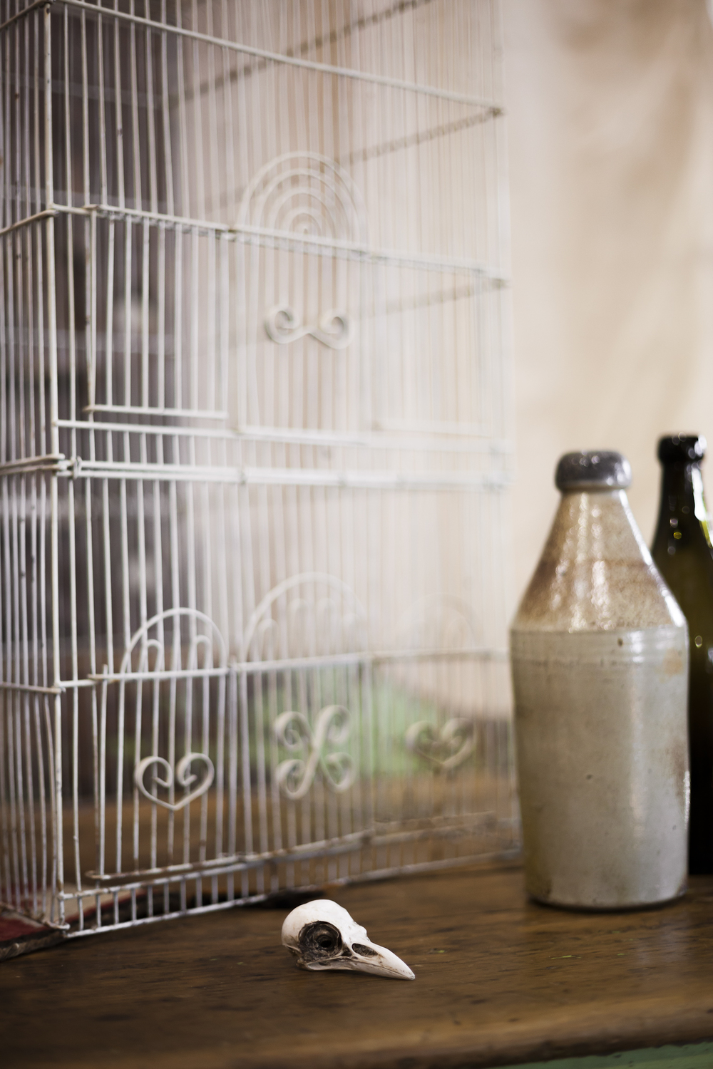 Antique Birdcage, Crow Skull, and Milk Bottles on a Distressed Table