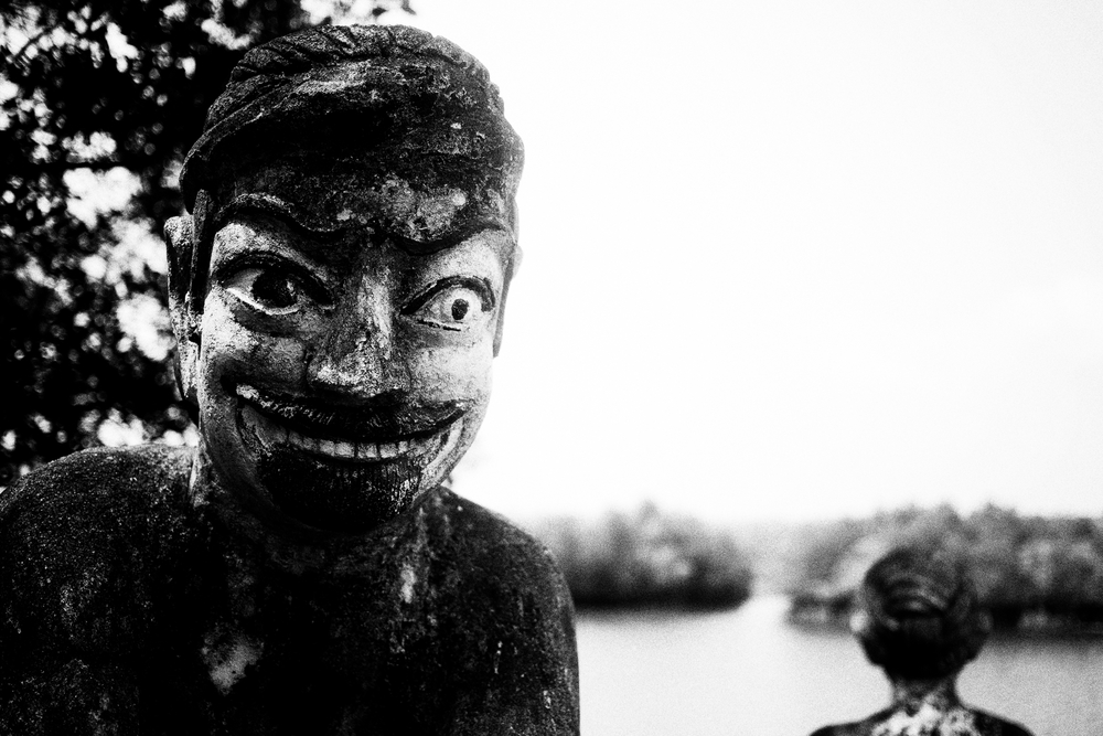 The backstabber.  Outside Koh Kong, Cambodia. March 2014.