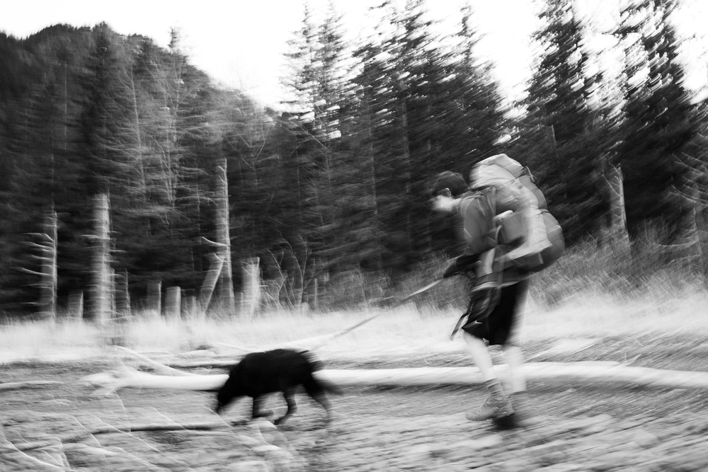 Panning shot. Hiking the beach berm near the Callisto Cabin, the first of the two rentable cabins in the Caines Head St. Recreation Area.