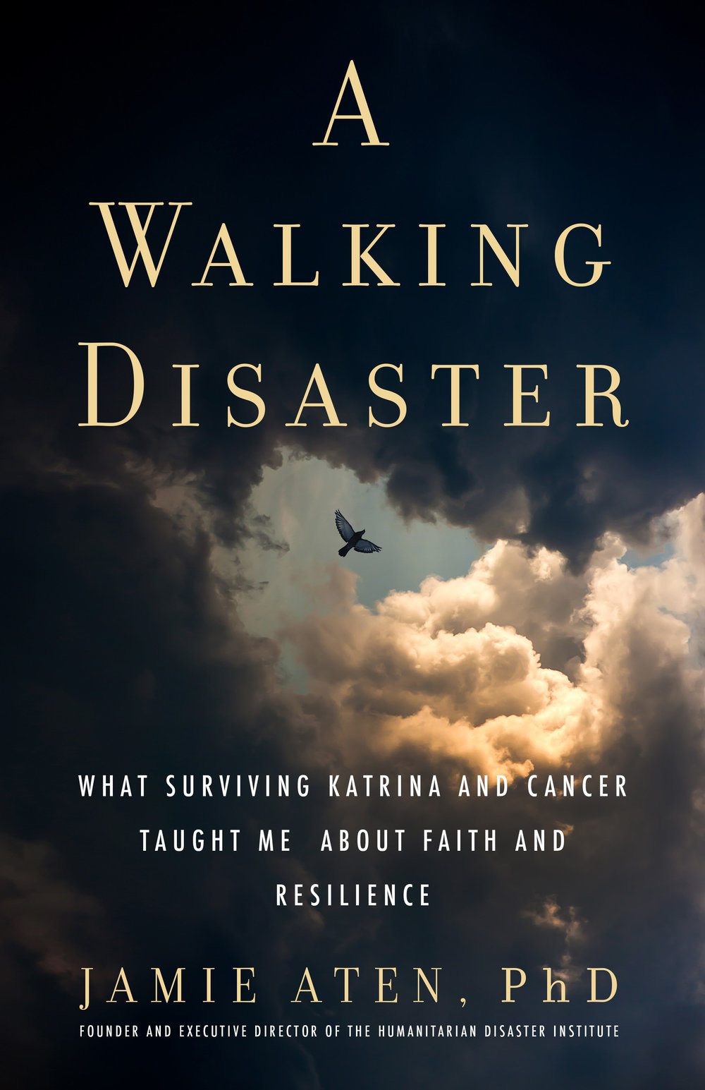 Walking Disaster-cover.jpg