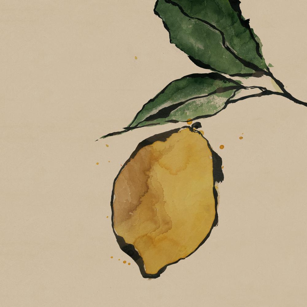 TheHungryChild-Illustration-Lemon