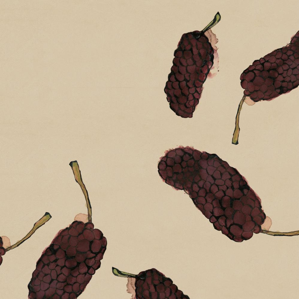 TheHungryChild-Illustration-Mulberry-Black