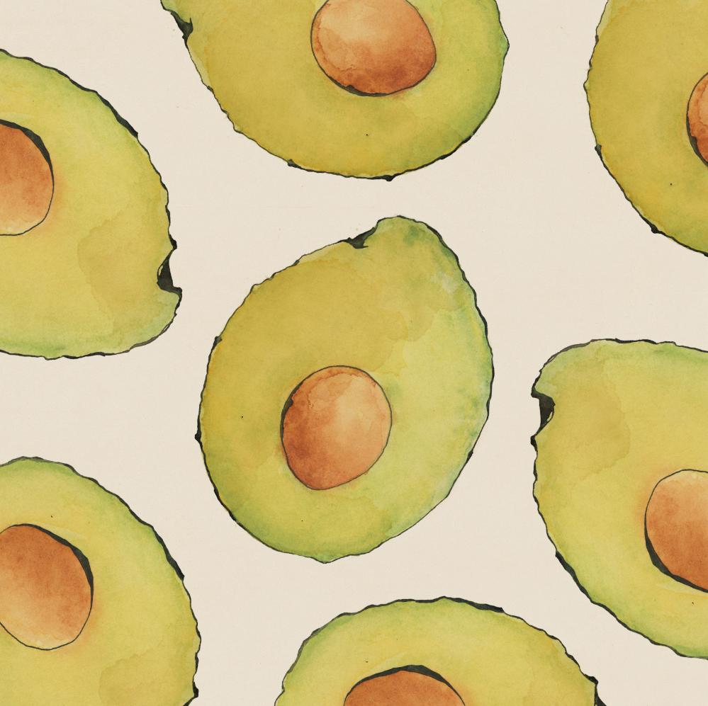 TheHungryChild-Illustration-Avocado