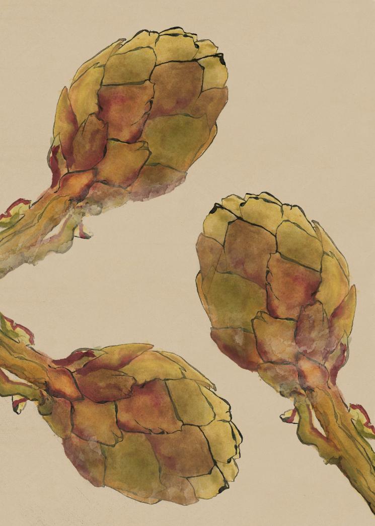 TheHungryChild-Illustration-Artichoke