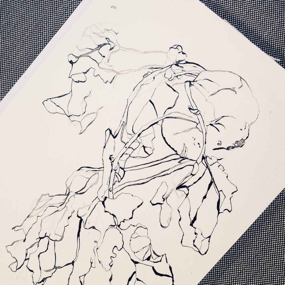 TheHungryChild-Illustration-Kohlrabi