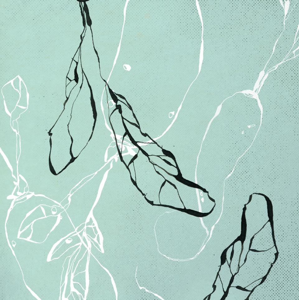 TheHungryChild-Illustration-Radish
