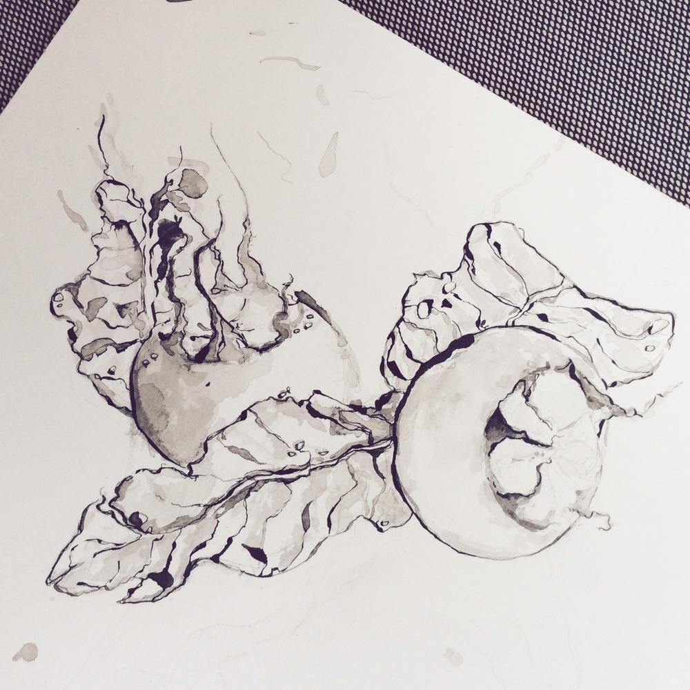 TheHungryChild-Illustration-Medlar-Ink
