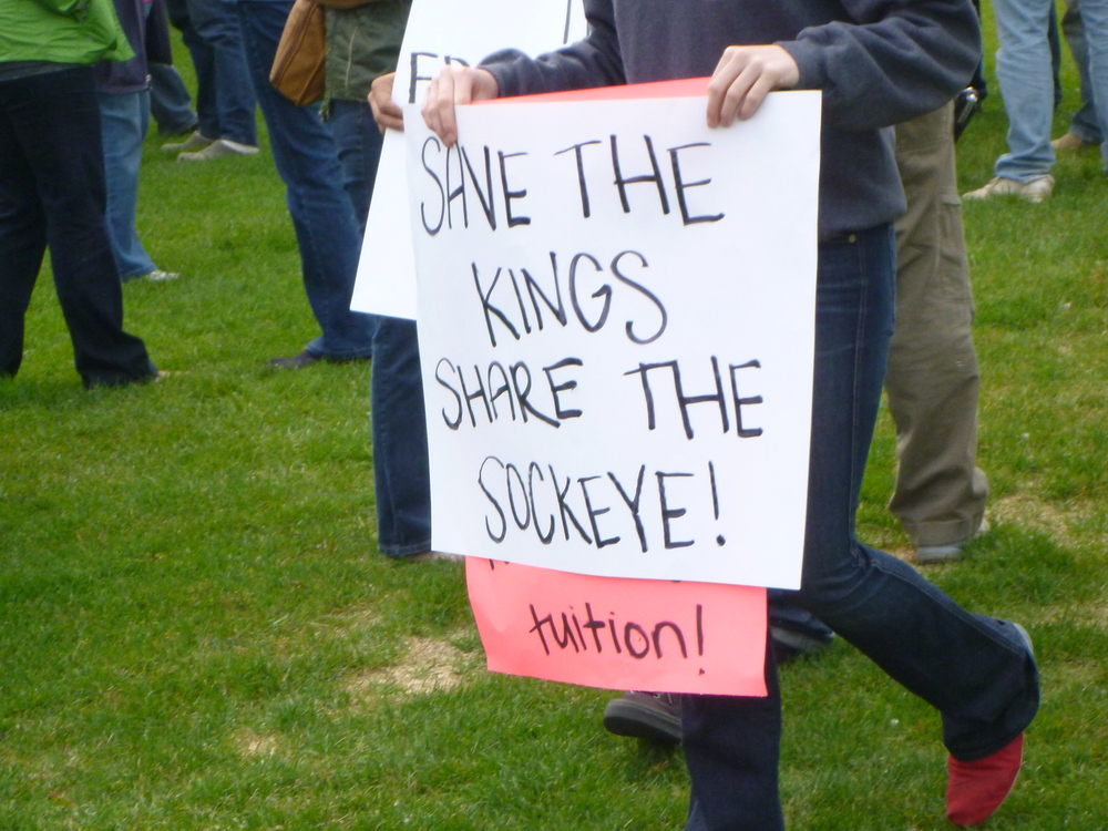 Protests were common during the 2011 closure of the east-side set-net fishery in Cook Inlet. Note here that despite the contentious nature of the issue, there was still an evident sentiment of sharing.