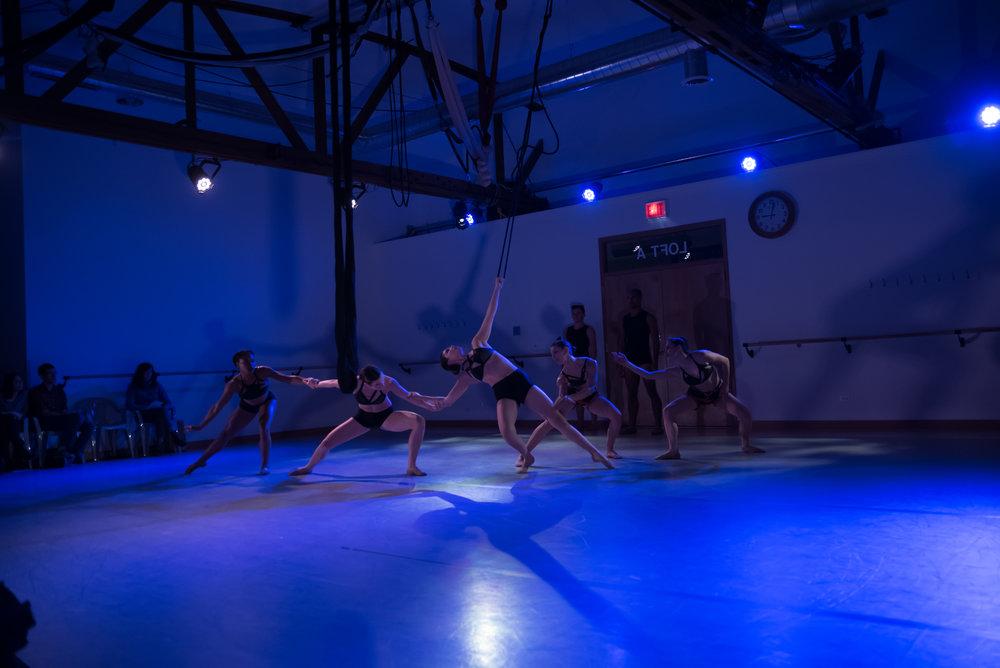 aerial dance chicago-5954.jpg