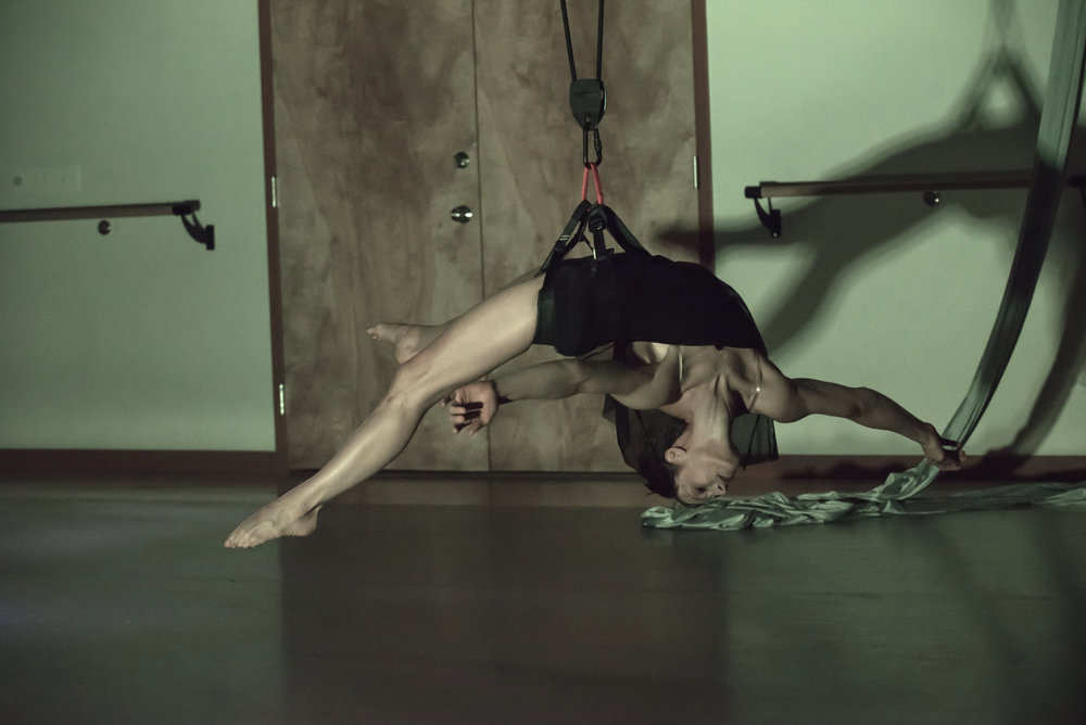 aerial dance chicago-5539 copy.jpg