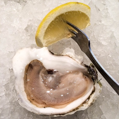 Elm Street Oyster House Oyster Spotlight Standish Shore