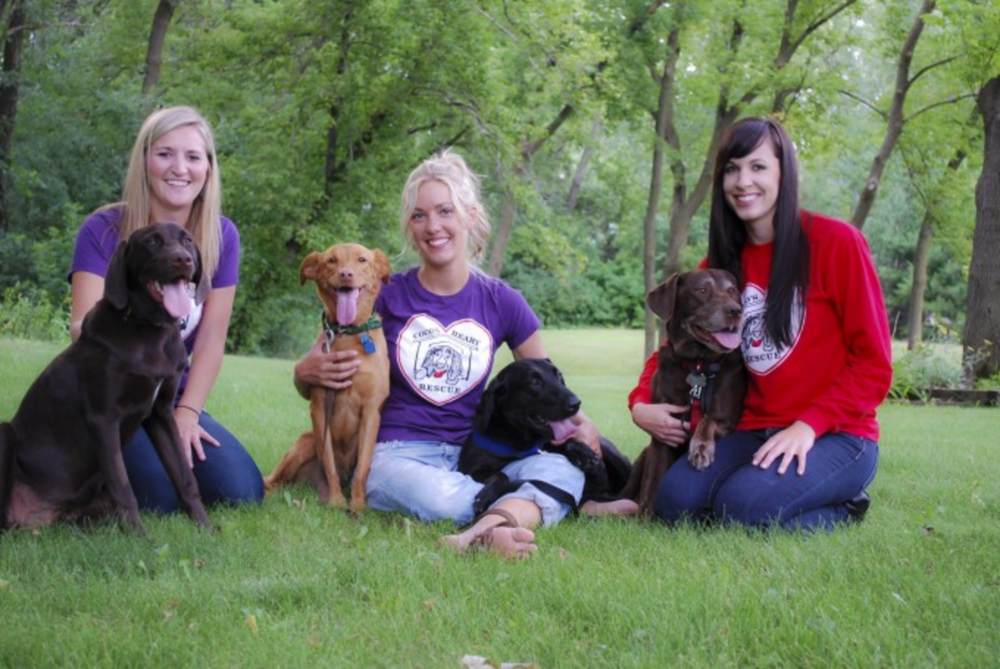 Coco's Heart has a dedicated and passionate Board of Directors. Founder, Ashley, and two of her childhood friends, Jami and Kara, are happy to be serving Coco's Heart Dog Rescue. Ashley, Jami and Kara met in kindergarten and have maintained a steady friendship throughout the years. With a love for animals, any childhood dreams can come true!