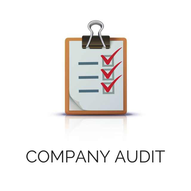 Born Fitness Consulting Company Audit