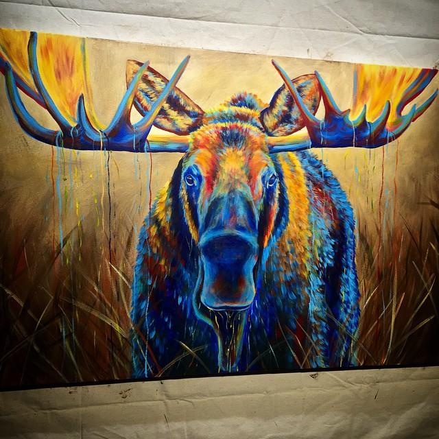 Moose marsh3.jpg