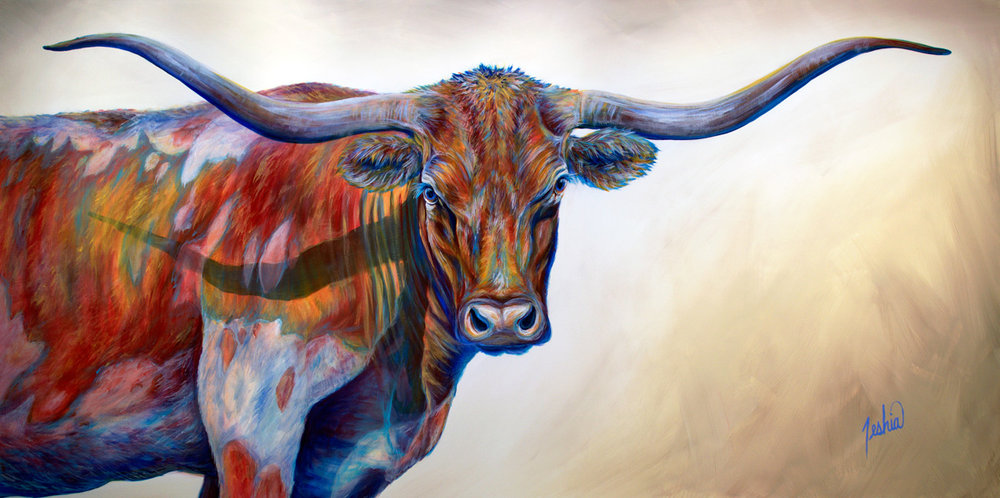 Cows & Longhorns