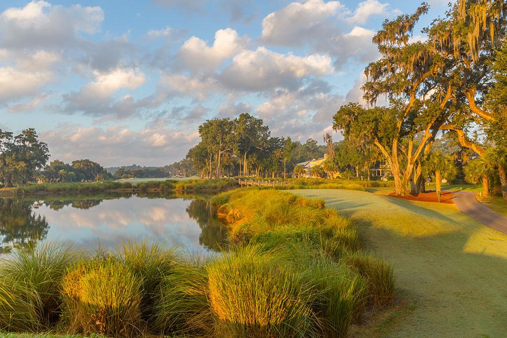 Ideal-Golf2.jpg