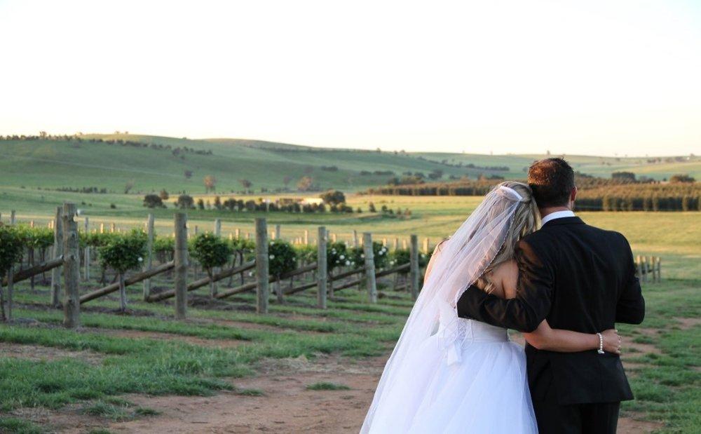 Couple Vines.jpg