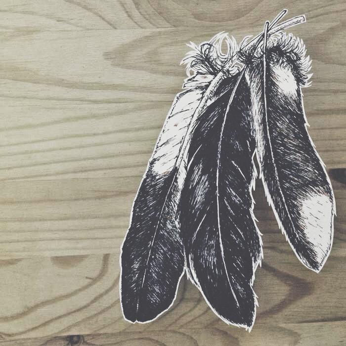 feathers-anitsiskwa