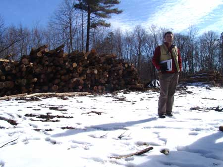 Christopher Riely, a forest supervisor for Providence Water was low quality and would likely end up being used as chip wood, fuel wood and/or shavings for horse paddocks. (Joanna Detz/ecoRI News)