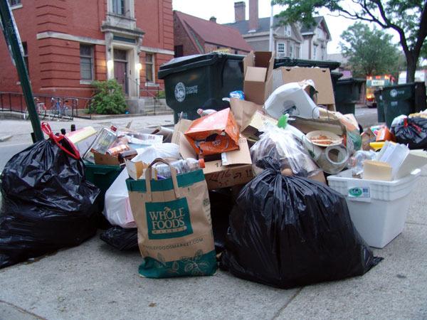 trash15.jpg