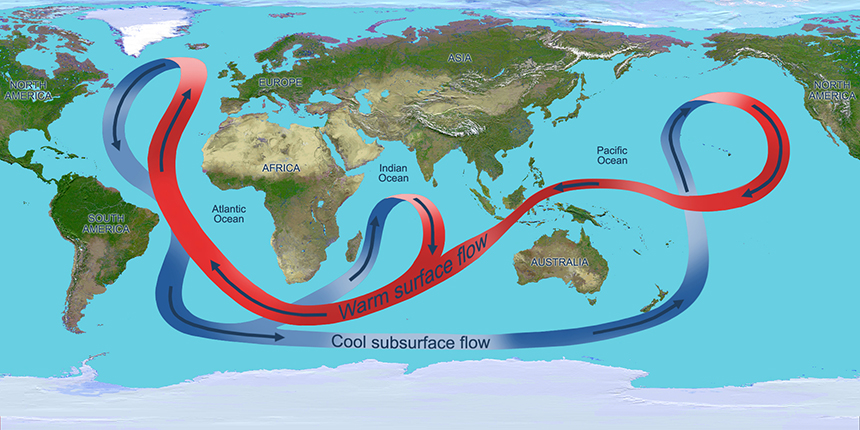 This illustration depicts the overturning circulation of the global ocean. Throughout the Atlantic Ocean, the circulation carries warm waters (red arrows) northward near the surface and cold deep waters (blue arrows) southward. (NASA/JPL)