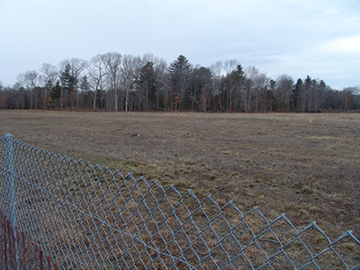 This parcel of land in the Quonset Business Park, clear-cut about four years ago, is still waiting to be developed. (Frank Carini/ecoRI News)