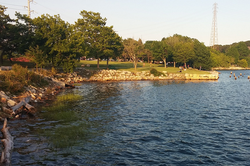 A collection of small artificial reefs will be placed along the eastern edge of The Cove in India Point Park, among existing wooden pilings. (Kevin Proft/ecoRI News)