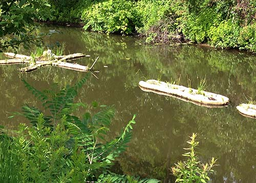 Canal restorers made of bamboo and local vegetation float on the Blackstone, supporting ecosystems once abundant in the river.