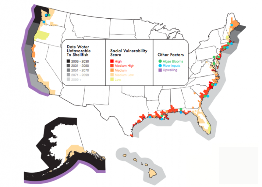 Of the 23 U.S. coastal regions identified by the Natural Resources Defense Council, 16 of them will face ocean acidification levels unfavorable for shellfish. Overlaying social factors, levels of agricultural runoff, local pollution and upwelling, a natural ocean process that brings more corrosive deep ocean water to the surface, helps tease out regional differences in vulnerability. (NRDC)