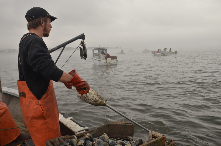 MIT is studying the impact ocean acidification is having on phytoplankton and what that could mean for the entire marine food web and the fishing industry. (R.I. Sea Grant)