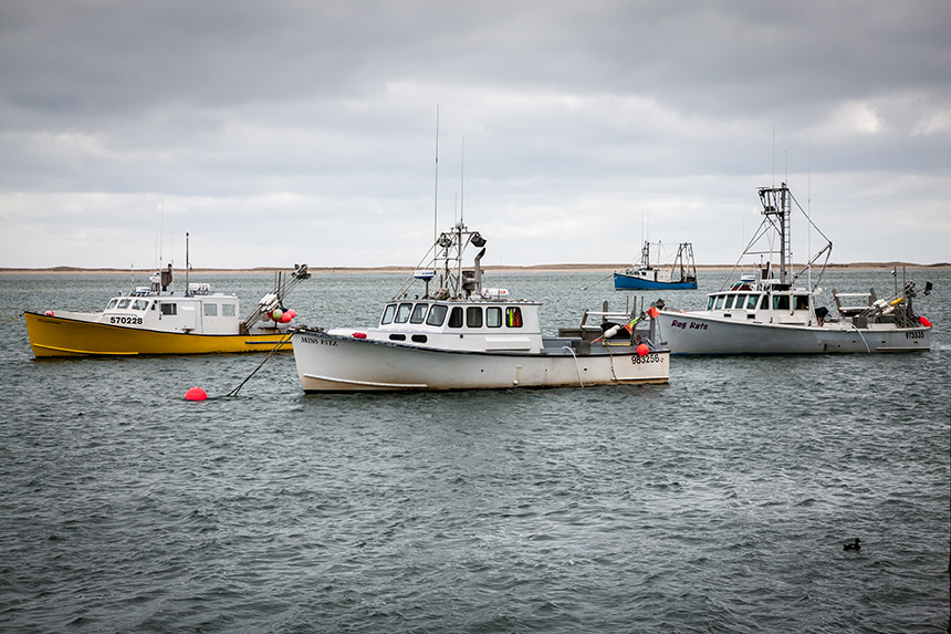 Small owner-operated day-boat commercial fishing businesses are the traditional backbone of Cape Cod's iconic fishing industry. Chatham remains as one of the last small-boat fleets in New England, preserved in part by efforts of the Cape Cod Commercial Fishermen's Alliance. (David Hills/The Prospect Hill Foundation)