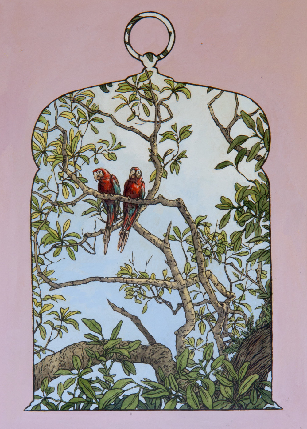 Red and green macaws are often sold as 'captive-bred,' but many of the birds used to breed parrots are actually taken directly from the wild. While their population numbers are high enough to keep them off the endangered species list, they are under increasing pressure from the pet trade. (Emily Poole painting)