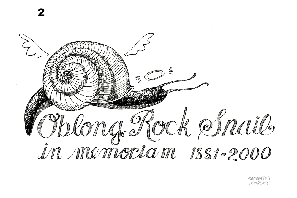 One of a series of 'empathy tattoos' drawn by a former RISD student for Creature Conserve. It highlights the plight of a rock snail, which the artist describes as 'equally important to the web of life' as the more charismatic giant panda. The snail was declared extinct in 2000, but was rediscovered in 2012. (Samantha Dempsey/Creature Conserve)