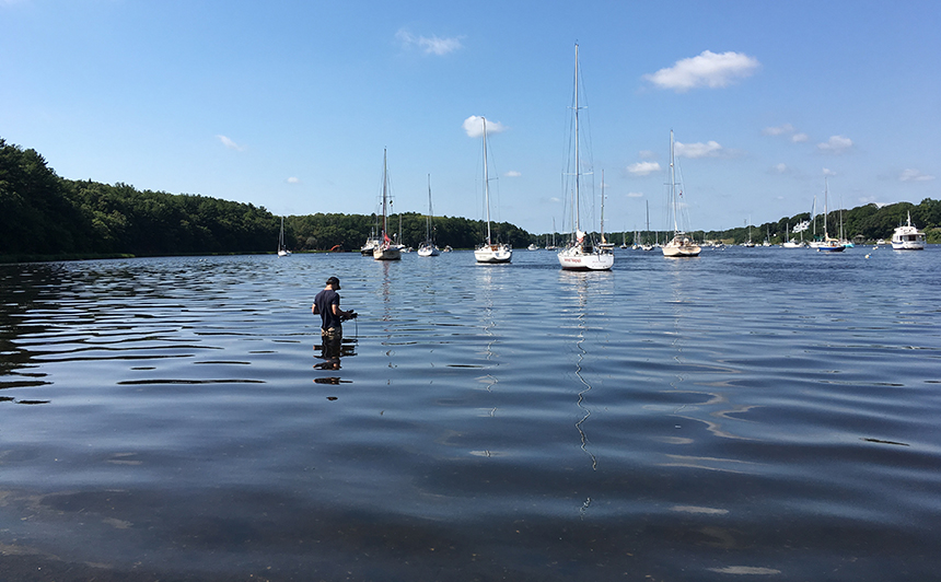 Brown University student James Corbett taking water-quality readings and looking for jellyfish in Greenwich Bay last month. (Sonya Gurwitt/ecoRI News)