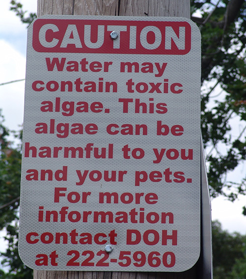 This sign is posted outside a park that abuts Warwick Pond.