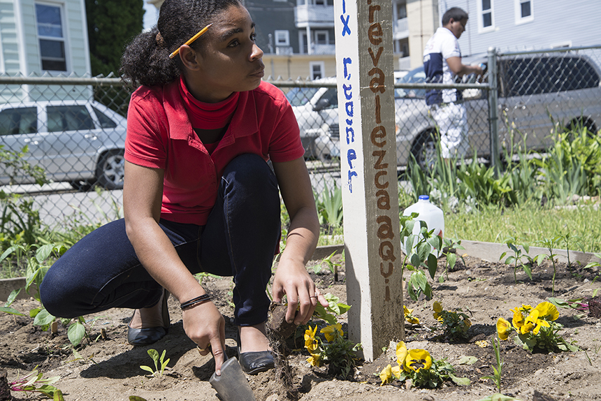 The Central Falls Community Garden grows healthy food and provides valuable educational opportunities for local students. (Joanna Detz/ecoRI News)